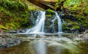waterfall into a stream. Even the image leaves me feeling the urge to pee