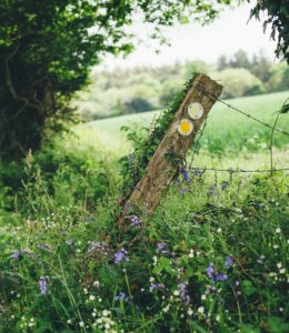 fence post leaning sideways