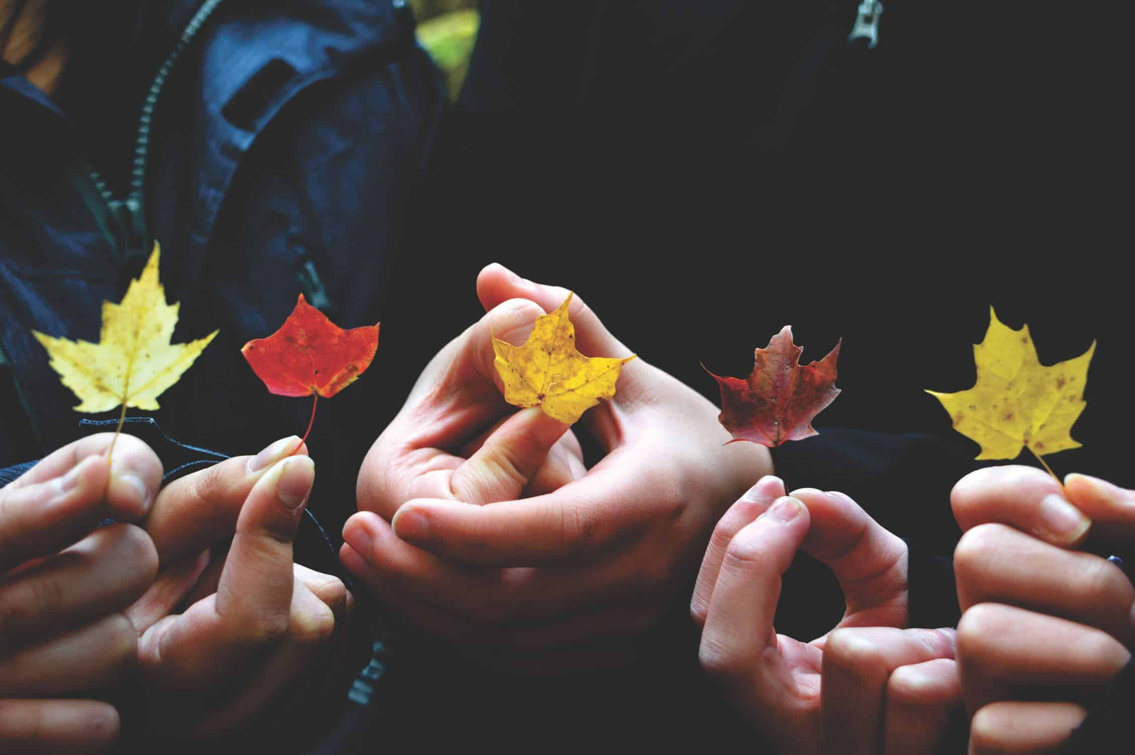 five different hands, each holding a different-colored leaf
